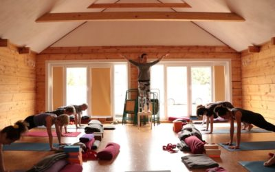 Majówka Yoga Medica w Uroczysku Sosnówka – RELACJA