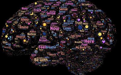 Propriocepcja a joga część 4 – jak mózg widzi nasze ciało