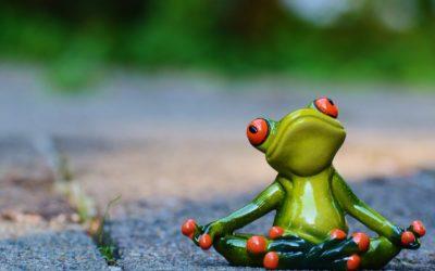 Historie z jogi wzięte – K.