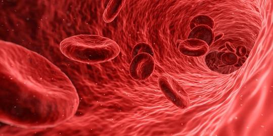 Przeplyw krwi w muzgu podczas medytacji